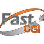 fastcgi+nginx internal server error